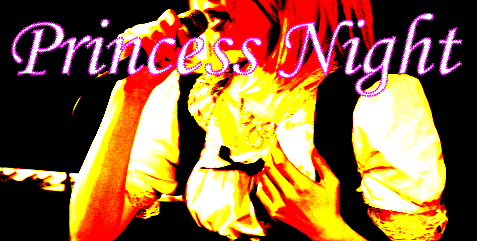 ☆Princess Night ☆ Vol.5